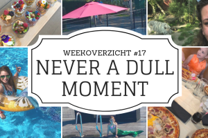 Weekoverzicht | Never a dull moment week 17