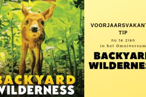Voorjaarsvakantie tip | Backyard Wilderness in het Omniversum