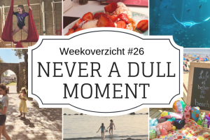 Weekoverzicht | Never a dull moment week 26 -2019
