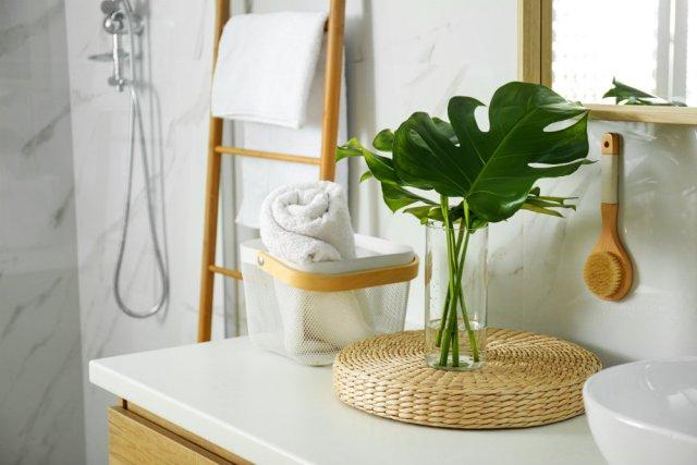 Botanische badkamer - Shutterstock Door New Africa