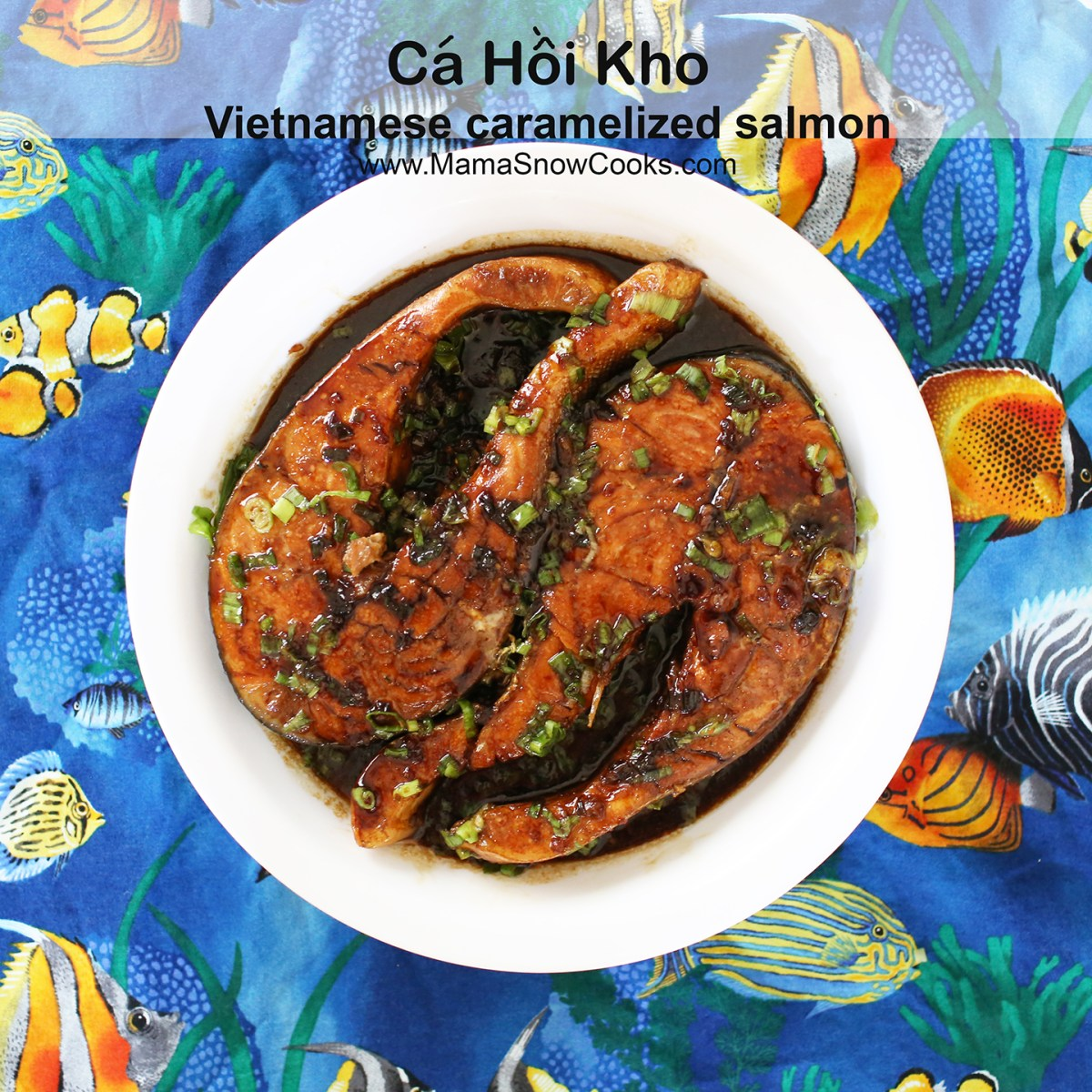 Vietnamese Caramelized Salmon - Ca Hoi Kho