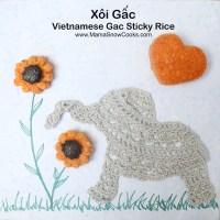 Vietnamese Gac Sticky Rice Cooked in Rice Cooker - Xoi Gac