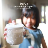 Instant Pot Yogurt - Da Ua Recipe