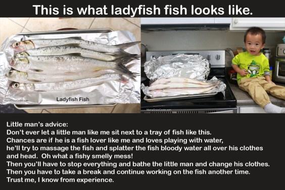 Cha Ca Ladyfish Fish Cakes 112519 (2)