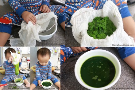 Growing & Extracting Pandan (10)