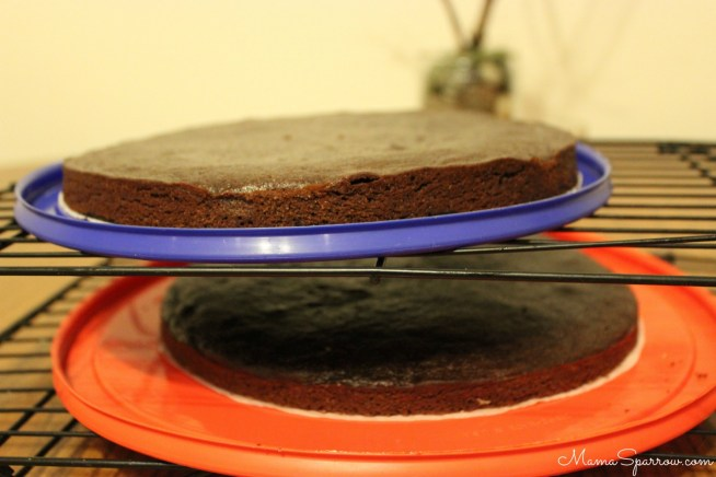 Vegan Spiced Chocolate Wine Cake