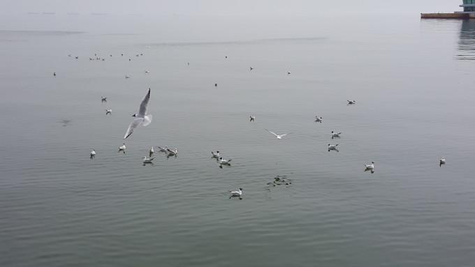 Бакинското море