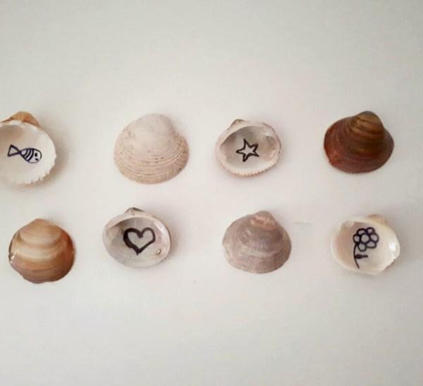 juego de memoria con conchas de mar