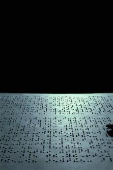 """Semiopolis series: """"Semiopolis: Origin of Species (Darwin)"""", 1999 © Joan Fontcuberta"""