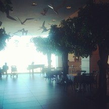 Trees in the lobby
