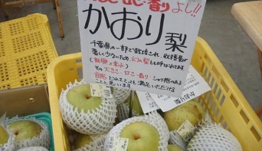 幻の梨?かおり(香梨)の値段と食べごろはいつ?