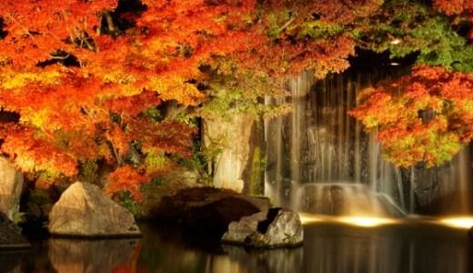 高尾山の紅葉はライトアップするのでしょうか?