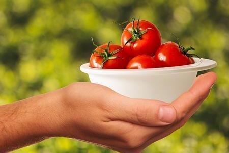 トマトには塩ではなく砂糖をかけて食べる人もいるって本当?