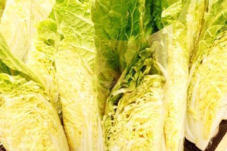 白菜って生で食べられるの?生食だと体に害があったりする?