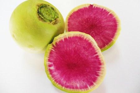 青皮紅心大根という赤い大根の味の特徴と旬の時期とオススメの食べ方は?