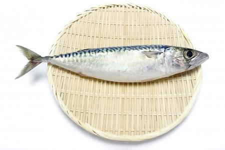 鯖寿司とバッテラの違いは?語源はポルトガル語から来ていた?
