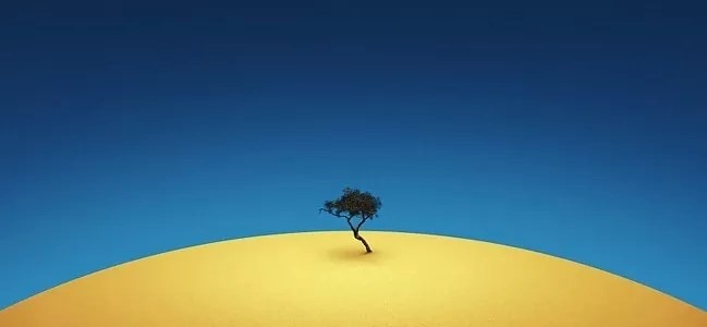 Tenere Tree - Amazing high resolution wallpapers #2