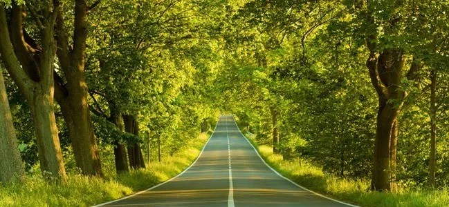 The Avenue Wallpaper - Amazing high resolution wallpapers #2