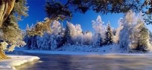 winter wallpaper - winter_wallpaper