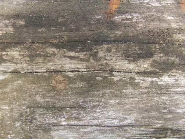 Old Wood by dazzle textures e1359620522795 - 200+ Free High Quality Grungy Dirty Wood Textures