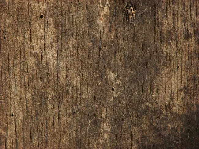 Wood 3 by CharadeTextures e1359620010415 - 200+ Free High Quality Grunge Wood Texture