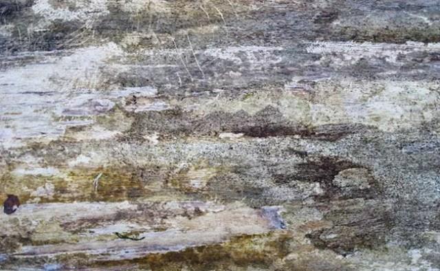 10 Super High-Res Grunge Wood Textures