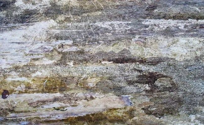 dirty wood 5 - 200+ Free High Quality Grunge Wood Texture