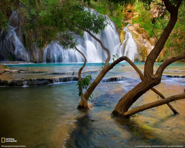Bestwallpapers2009fromNationalGeographic 18 1024x819 - Free High Quality Nature Wallpapers