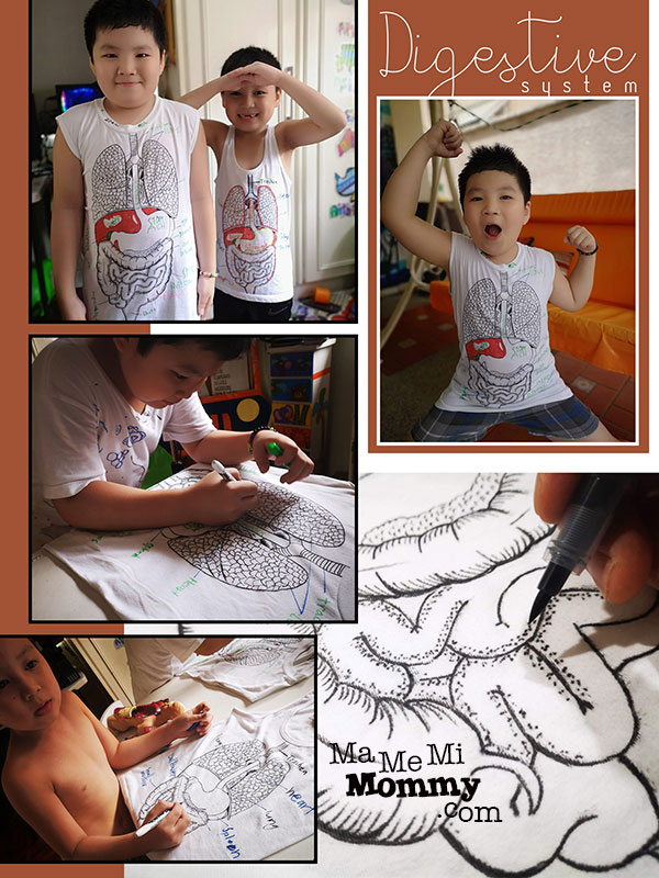 Body system t-shirts