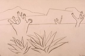 Simple pencil drawing of plants in a desert