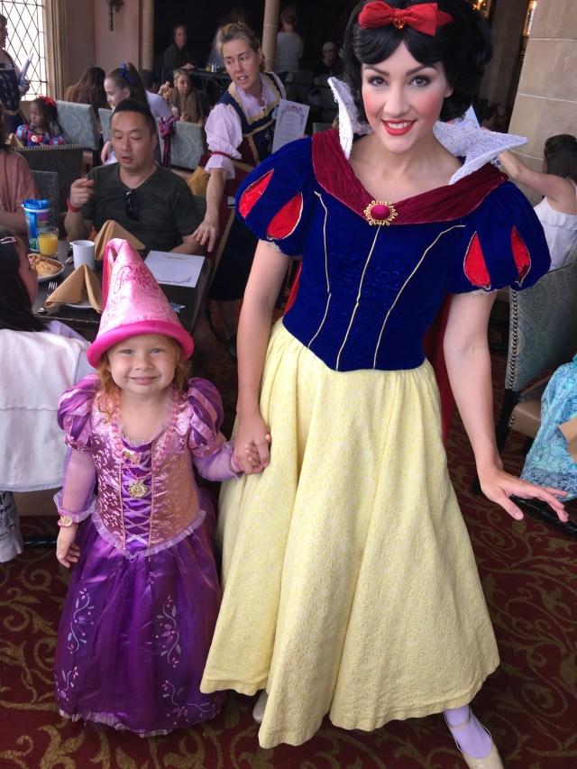 Disney Princesses - Cinderella