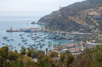 Catalina Island, view from the mountain