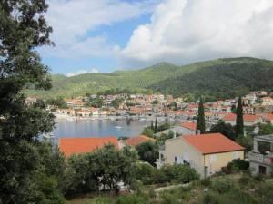 Pogled na vasico iz zgornje poti.