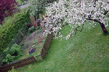 Landidylle im Garten