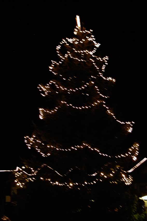 Lieblinge zu Weihnachten