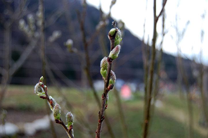 Upcycling im Frühling