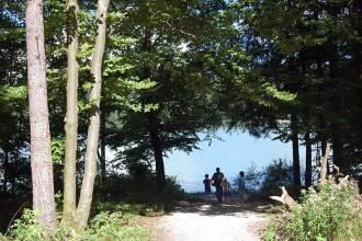 Der Naturblog Mami rocks: Wandern am Hechtsee
