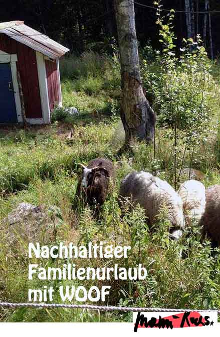 Nachhaltiger Familienurlaub mit WWOOF
