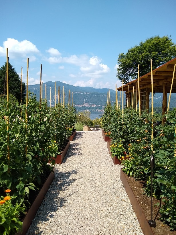 La Darbia Vegetable Garden