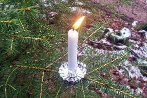 Alternativer Tannenbaum – Waldweihnacht mit Kindern