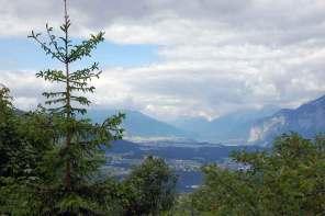 Wanderung zur Patscher Alm: Naturerlebnis Wald & Wiese