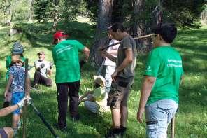 Mit dem Alpenverein Bergwaldprojekt  in Obernberg