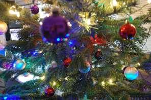 2020 Weihnachten im Wald und zuhause