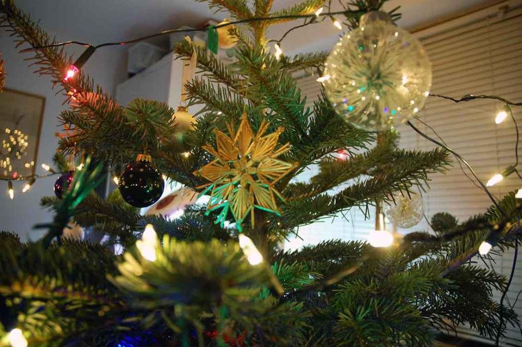 Weihnachten im Wald und zuhause