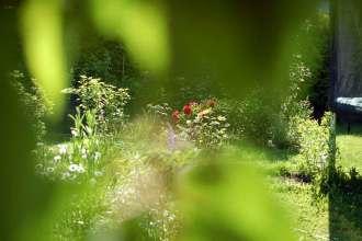 Naturgeister im Garten