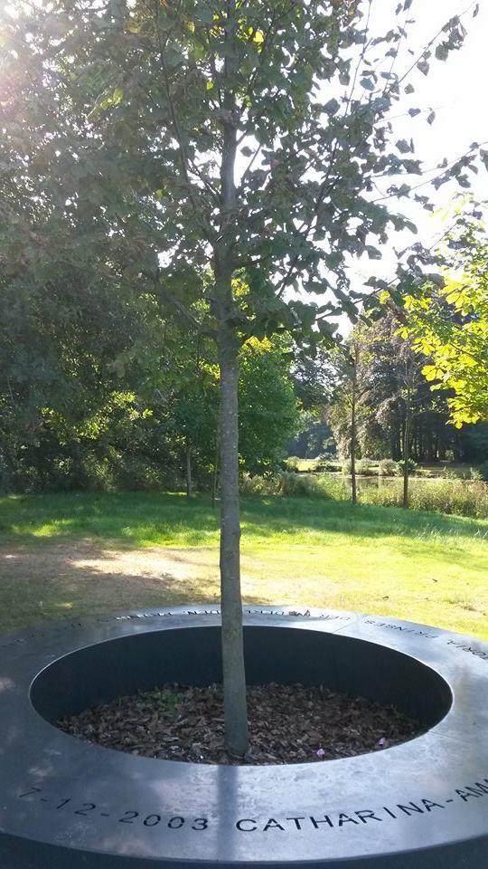 De Amaliaboom, pronkzaal van Oranje