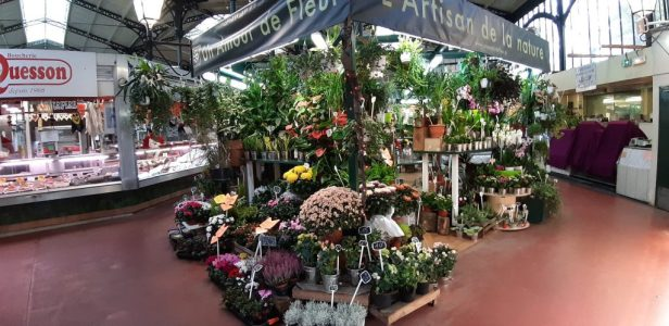 Markthal budgettips