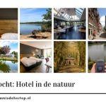 De Prinsentuin, oase van rust in het centrum van Groningen