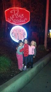 LA-Zoo-Lights-22