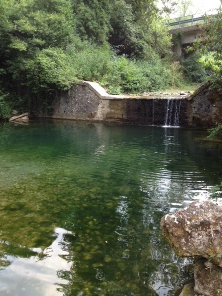 rock pool 1